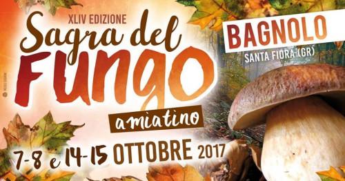 Locandina della Sagra del Fungo Amiatino a Bagnolo, edizione 2017